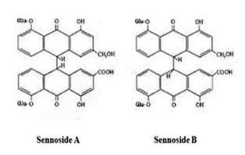 Calcium Sennosides A & B Extract
