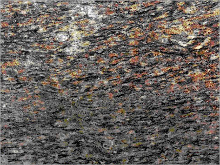 Deccan Brown Granite