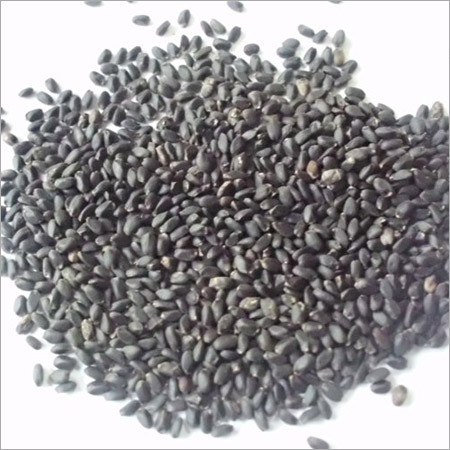TUKMARIA/BASIL SEEDS