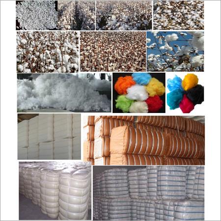Fiber Raw Material