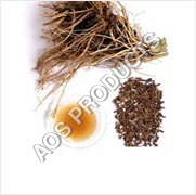 Valerian Root Oil