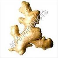 Ginger Oleoresin 15% to 45%
