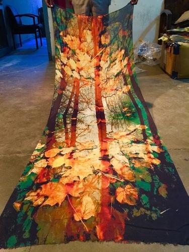 Abstract Art digital print Shawls