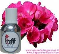 Geranium BB Fragrance Oil