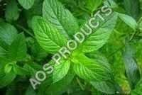 De-mentholised Mint Oil