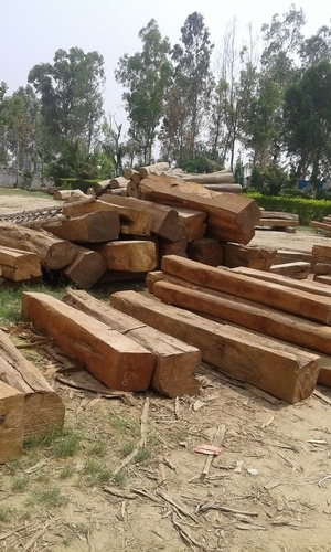 Square Sudan Teak Wood