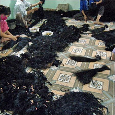 Women Vietnam Hair