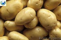 Potato chips machine