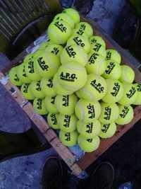 APG网球蟋蟀球