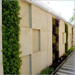 Vertical Garden on Compound Wall
