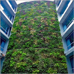ELT Vertical Garden Projects
