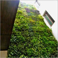 Vertical Garden at courtyard area