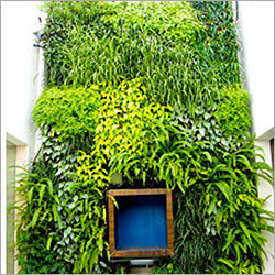 ELT Vertical Garden Projects