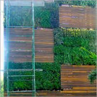 Green Wall Vertical Gardening