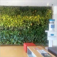 Reception Area Vertical Gardening