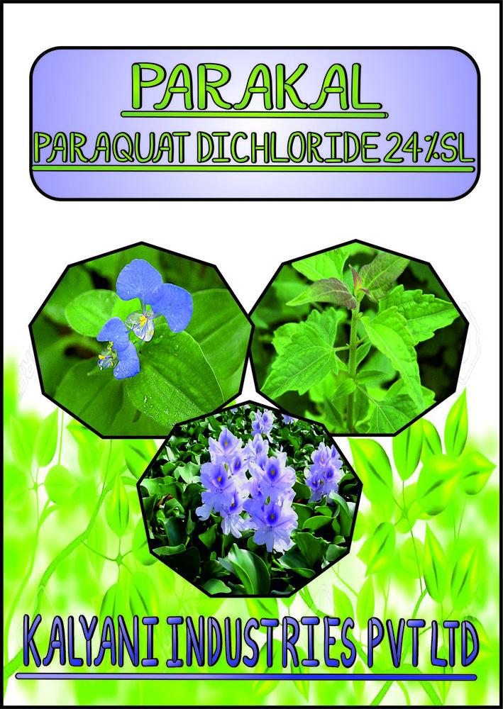 Paraquat Dichloride 24 % Sl