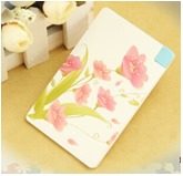 Credit Card Type Mobile Power Bank 2500mAh