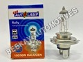 P-43 (HALOGEN LAMPS H-4 SERIES)