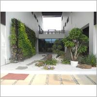 Courtyard Vertical Gardening