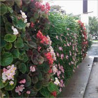 Flower Vertical Gardening