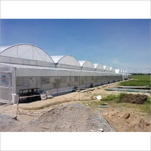 Green House Contractor