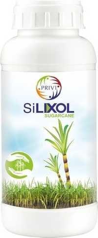 Sugarcane Plant Growth Regulators