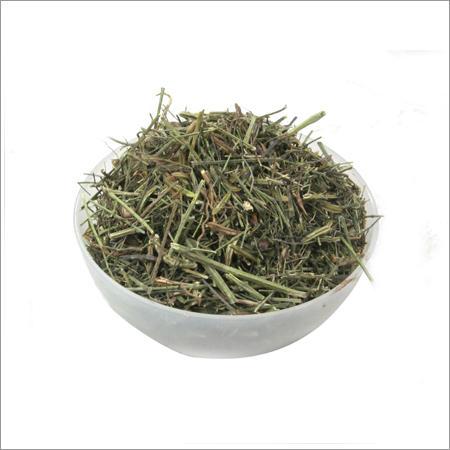 Kalmegh Herbs