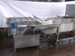 Fruit Vegetable Washer