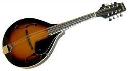 Flat Back Mandolin