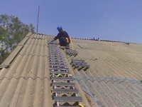Duck Ladders