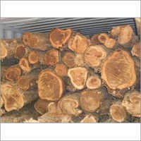 Costa Rica Teak Wood Logs