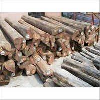 North American Teak Wood Logs