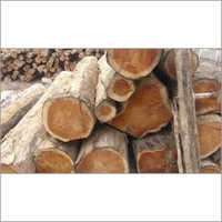 Teak Timber Wood Logs
