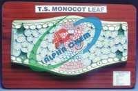 Monocot Leaf T.S.