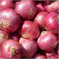Dehydrated Onion