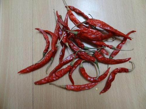Teja chilli from Guntur