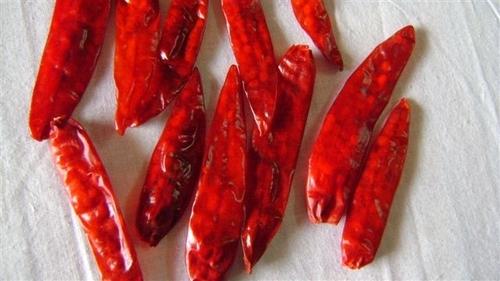 Sanam chilli