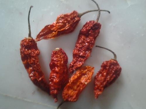 Naga Jolokia Chilli