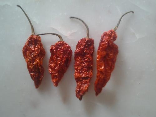 Bhut Jolokia Pod
