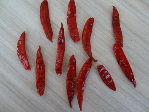 Indian S4 Chillies