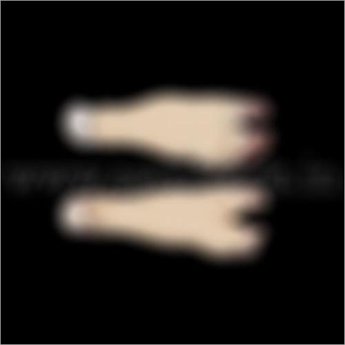 Buffalo Leg