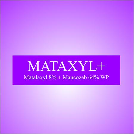 Metalaxyl 8%+ Mancozeb 64% WP