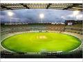 Cricket Ground Grass