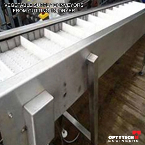 Vegetable Supply Conveyors From Cutting To Dryer