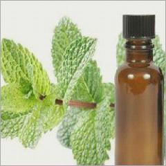 Bergamot Mint Essential Oil