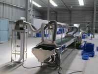 Cashew Kernel Packing Machine