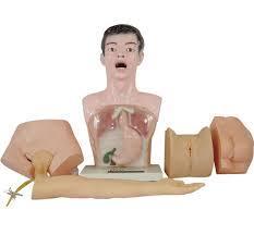 Nurse Basic Practice Teaching Model
