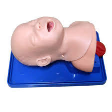 The Model of New born Intubation