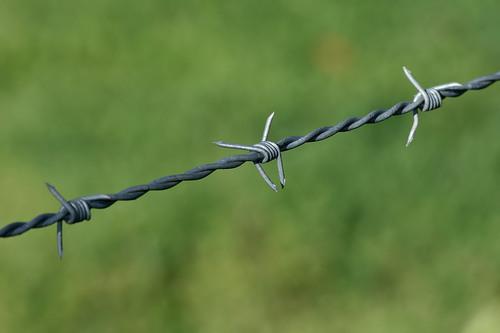 S.S Razor Wire