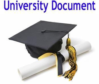 University Document Courier Services - SKY FLY LOGISTICS PVT
